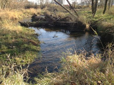 Scappoose Confluence