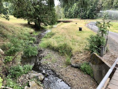 Raymond Creek Restoration Design