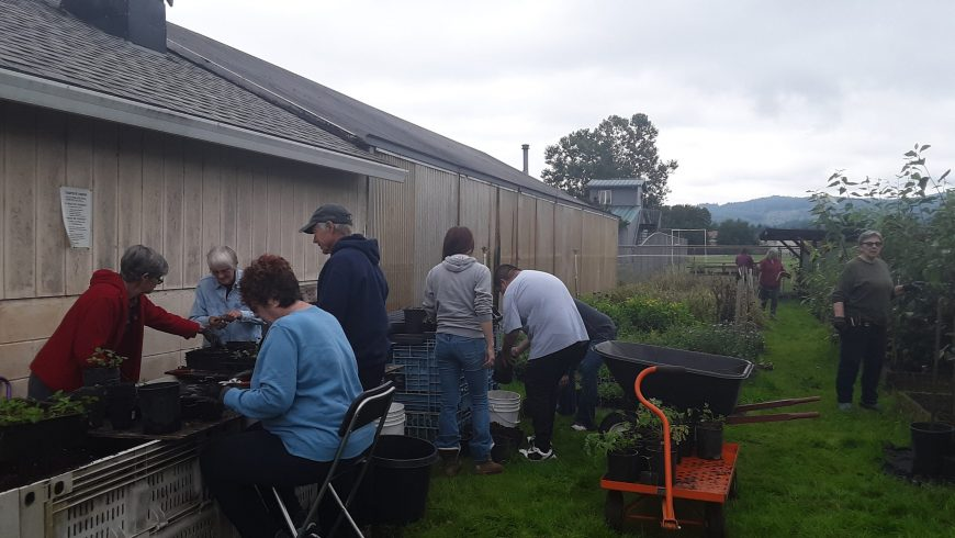 Native Plant Nursery Sale – April 2021